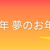 2018年 ヨドバシカメラ福袋『夢のお年玉箱』中身ネタバレ