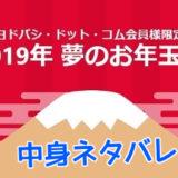 2019年ヨドバシカメラ福袋中身ネタバレ【夢のお年玉箱】