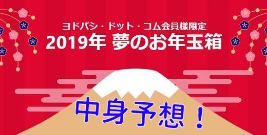 2019年ヨドバシカメラ福袋中身予想!【PC・タブレット・スマホ編】