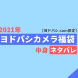 【2021年】ヨドバシ福袋中身ネタバレ【夢のお年玉箱】
